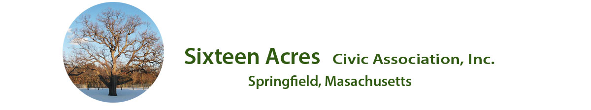 bylaws sixteen acres ma